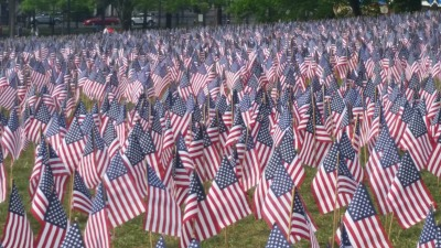 BostonCommonMemDay2016Flags